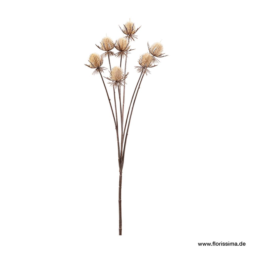 Distel - Zweig mit 7 Blüten, L61cm (#191319000)