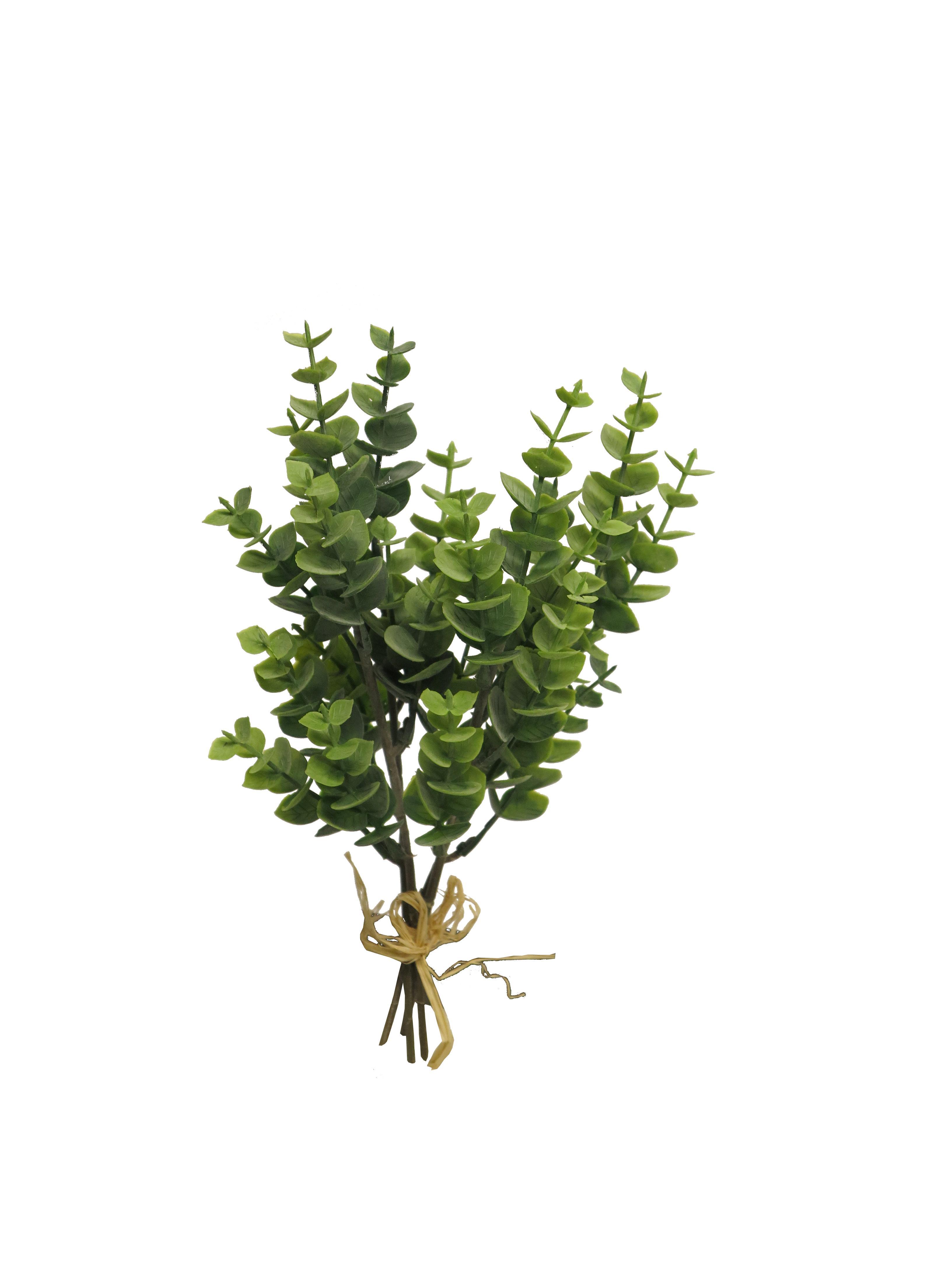 Eucalyptus Bund L26cm, Ve. 1 Bund
