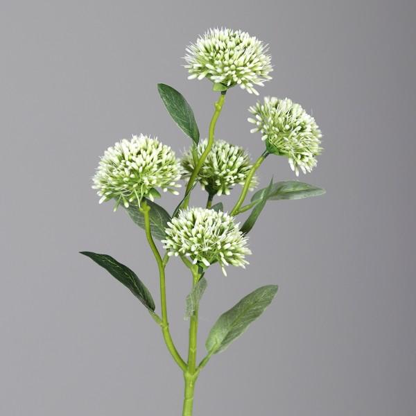 Allium mit 5 Blüten L56cm, Ve. 1