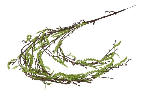 Birkenzweig, Länge 110cm, 1 Zweig