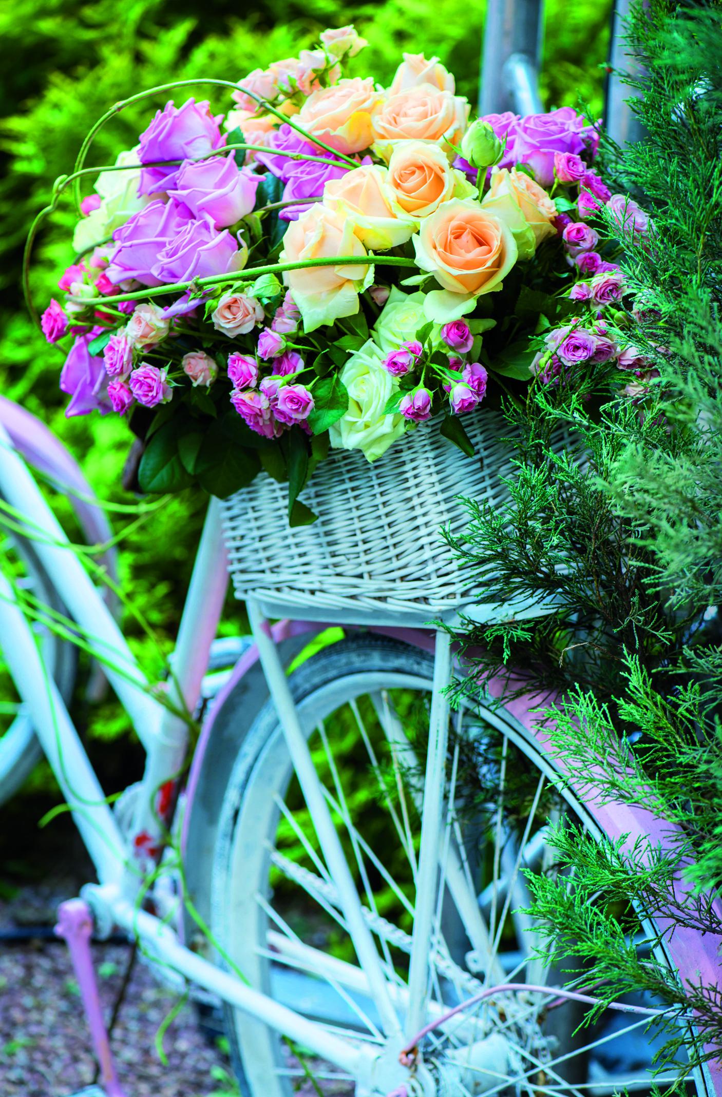 Fahrrad m. Blumenkorb