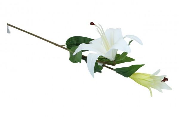 Lilie mit 2 Blüten, Länge 79cm, 1 Stück
