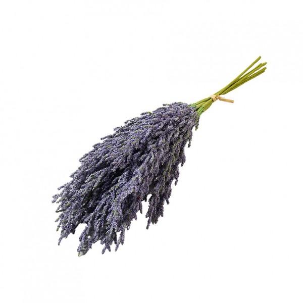 Lavendelbündel L36cm, VE=3 St. im Bund (#181294060)