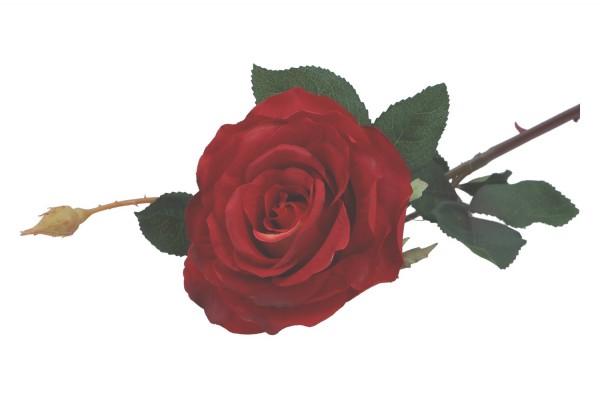 Rose mit Knospe 70cm, 1 Stück