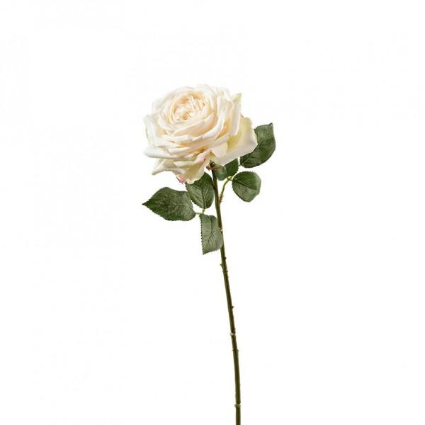 Rose mit Blätter L66cm, Ve. 3Stück (#191190044)