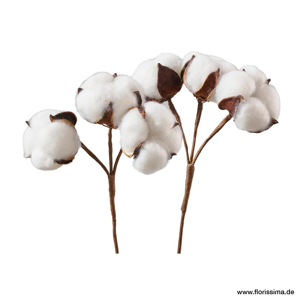 Baumwollblüten Pick, L22cm, Ve. 8 Stk (#181098000)