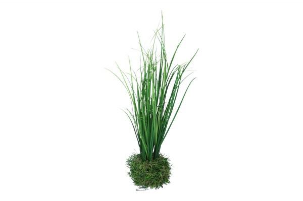 Gras in Gras Höhe 38cm, 1 Stück