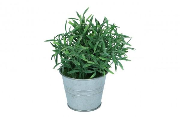 Gras im Zinktopf, Höhe 18cm, 1 Stück