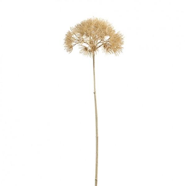 Allium L73cm, Ve. 1 (#191207000)