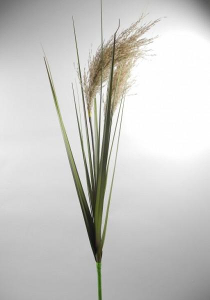 Gras Zweig, Länge 124cm, 1 Stück