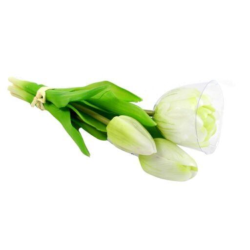 Tulpenbund 25cm, 1 Bund = 4 Tulpen (#191101010)