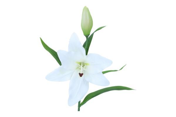 Lilie mit Knospe, Länge 50cm, 1 Stück