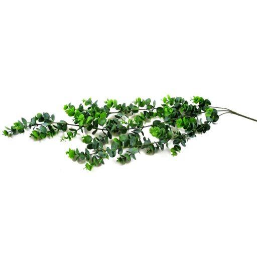 Eukalypthushänger, Länge 76cm, 1 Stück