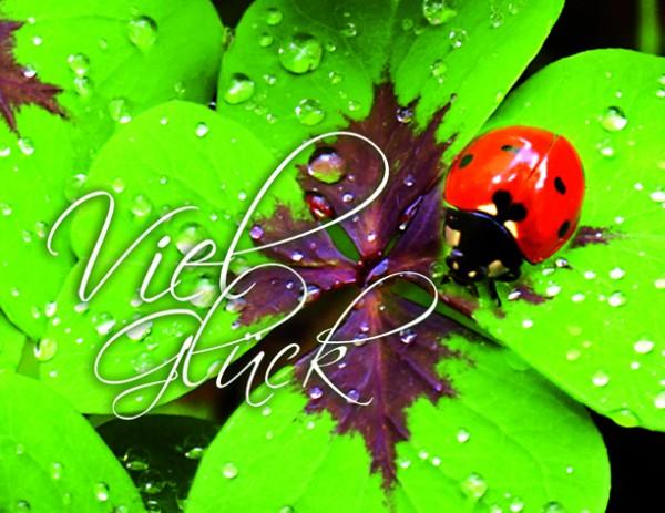 'Viel Glück' - Minikarten mit Umschlag