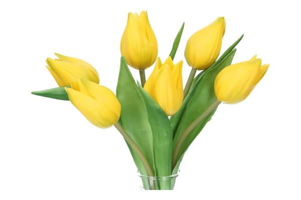 Tulpen 20cm, 1 Pack. = 6 Tulpen