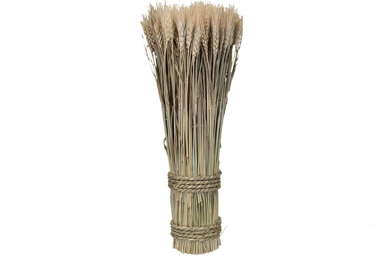 Weizen Bouquet 300gr. D10cm, H50cm (#160415000)
