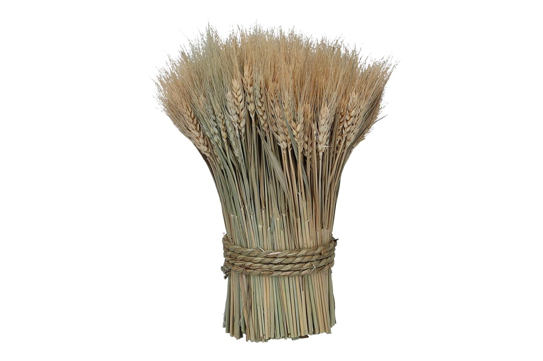 Weizen Bouquet 300gr. D12cm H30cm,  (#160414000)