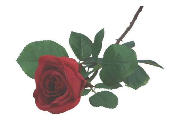 Rose 95cm, 1 Stück