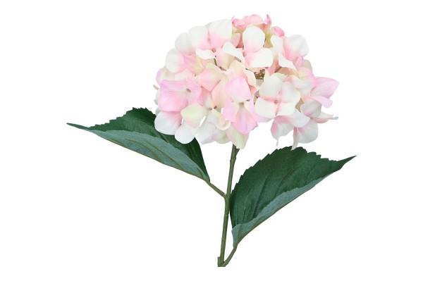 Hortensie Länge 68cm, rosa, 1 Stück