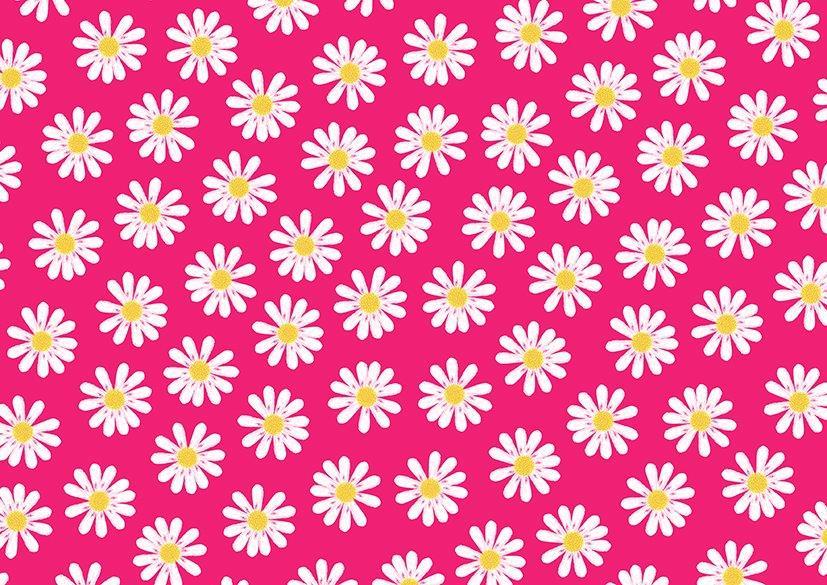 Geschenkpapier 'Daisies', Ve. 1 Rolle