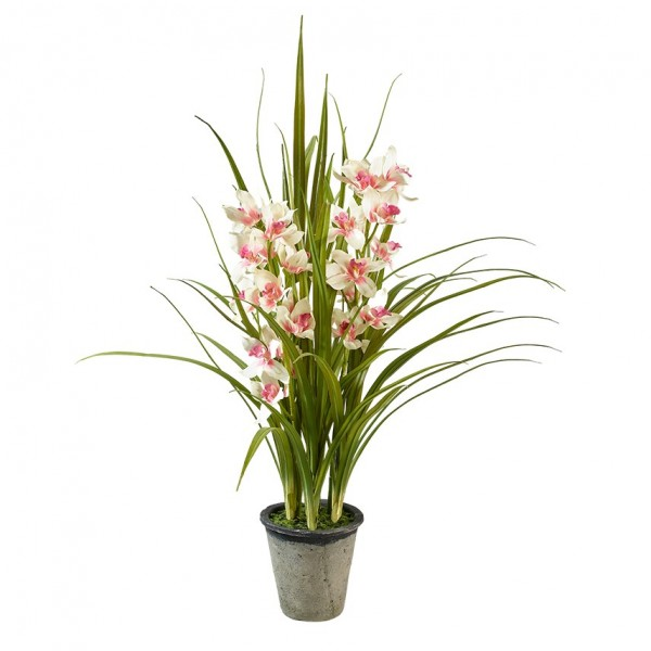 Orchidee im Topf H107cm, Ve. 1 (#191213268)