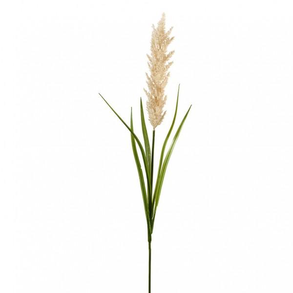 Pampasgras Zweig mit Blätter L118cm, Ve1 (#191198010)