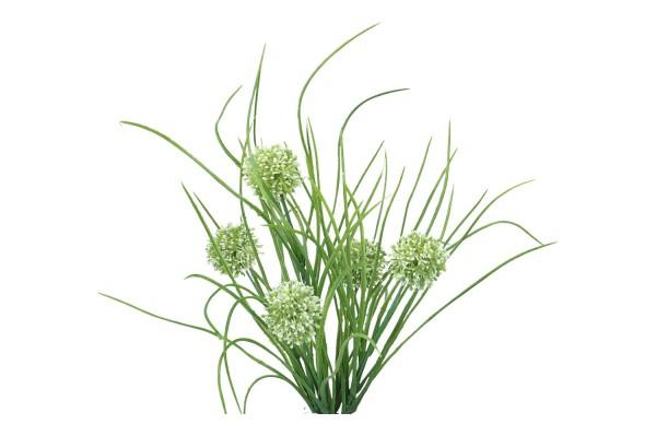 Alliumbusch 39cm, 1 Pick