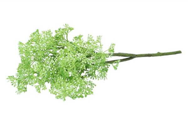 Sedum Flower Busch Länge 36cm, 1 Stück