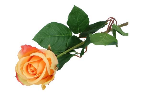 Rose, Länge 52cm, 1 Stück