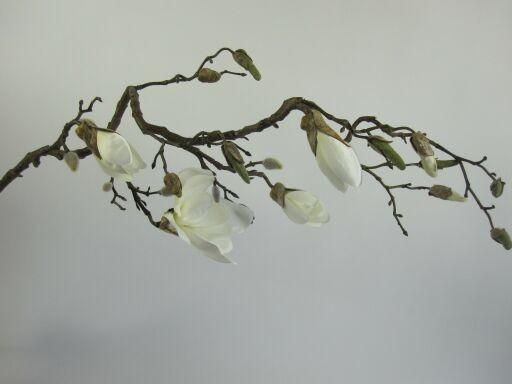 Magnolienzweig 140cm, 1 Zweig
