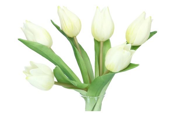 Tulpen Länge 20cm, 1 Pack = 6 Tulpen