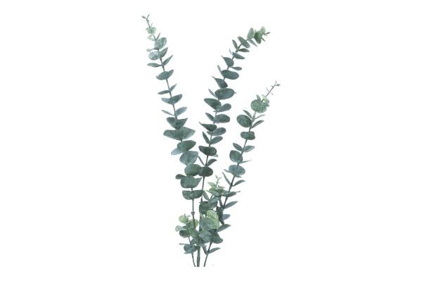 Eucalyptus Länge 82cm, 1 Zweig