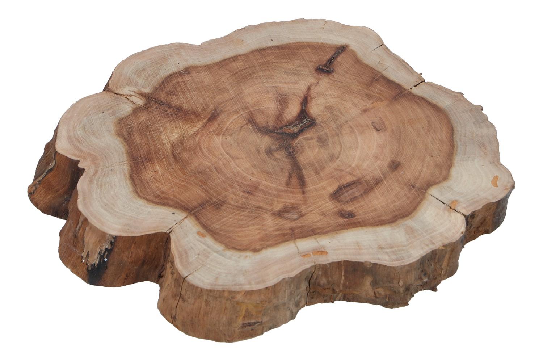 Holzscheibe D 24cm, Ve. 1 Stk (#131409000)
