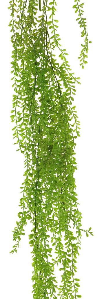 Knopfblatt Busch hängend L108cm, grün