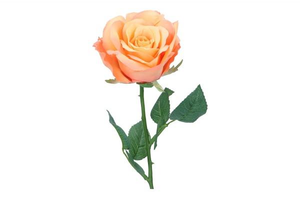 Rose, Länge 51cm, 1 Stück