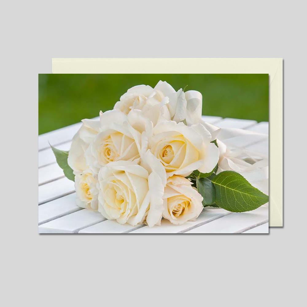 Weiße Rosen, 1 Pack = 5 Karten