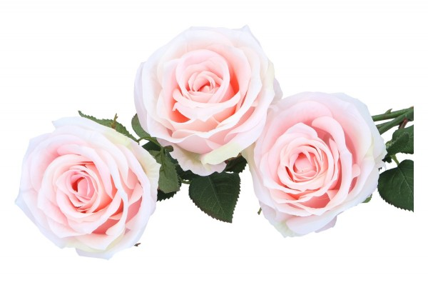 Rosen mit Blättern, Länge 39cm