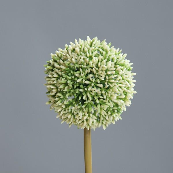 Allium L67cm, Ve. 1