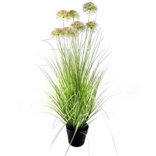 Allium x8 mit Gras im Plastiktopf H94cm (#191031035)