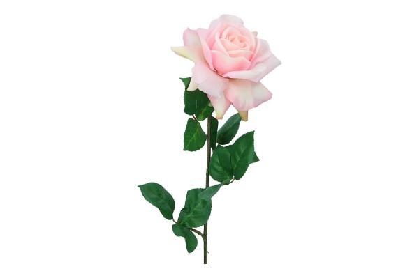 Rose, Länge 68cm, 1 Stück