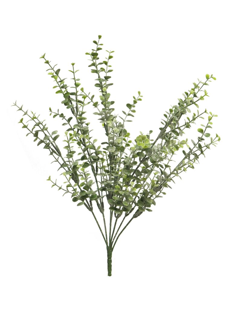 Eucalyptus Busch L43cm, Ve. 1 Stk