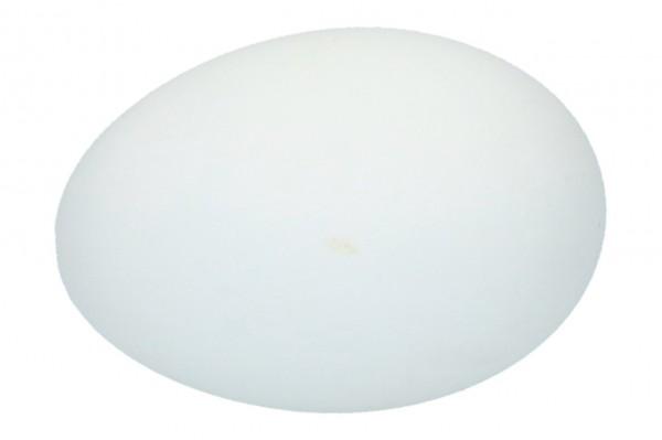 Gänse Eier, Ve.1 Box a 24 Stück (#160425000)