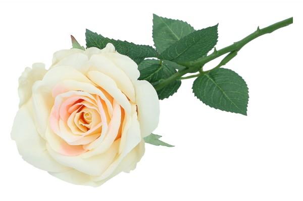 Rose, Länge 51cm, 1 Stcük