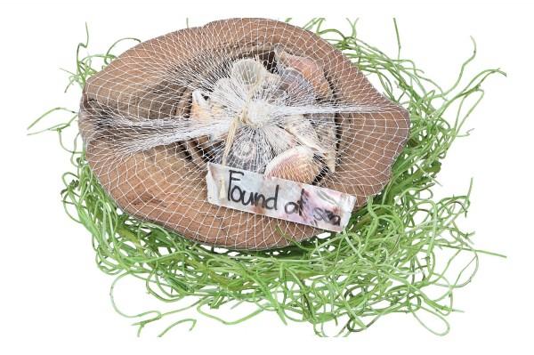 Halbe Kokosnuss mit Muscheln, 1 Stück