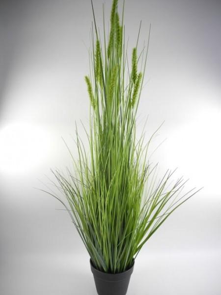 Gras im Topf, Höhe 114cm, grün, 1 Stück (#190011019)