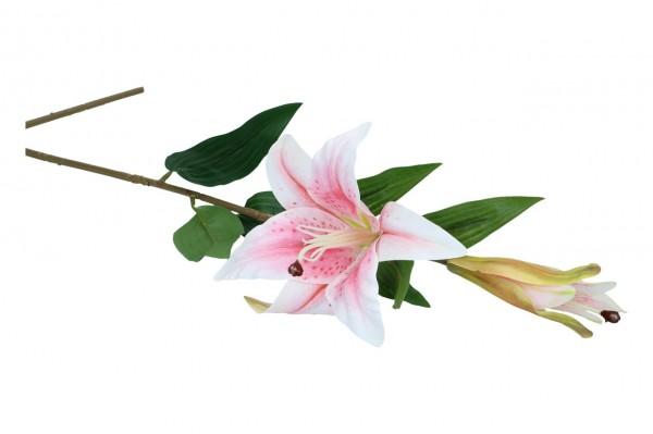 Lilie mit 2 Blüten, Länge 74cm, 1 Stück